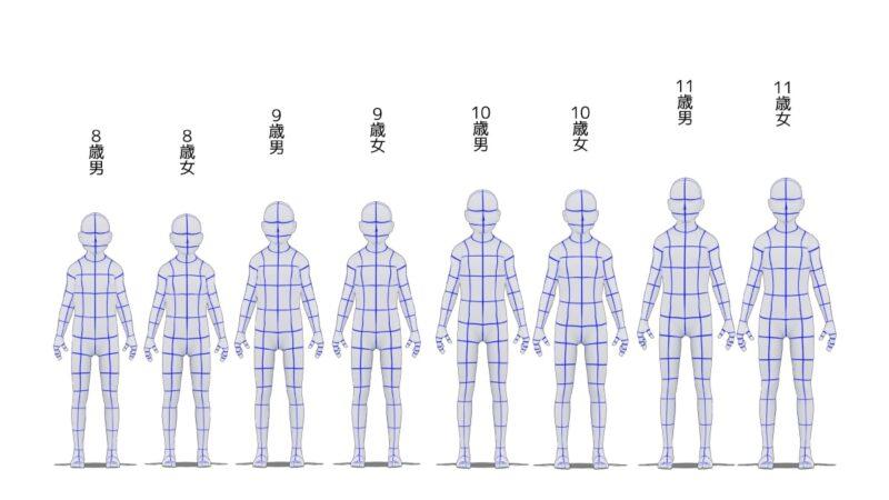 8歳から11歳の身長比較