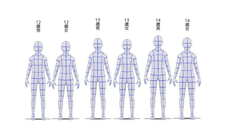 12歳から14歳の身長比較